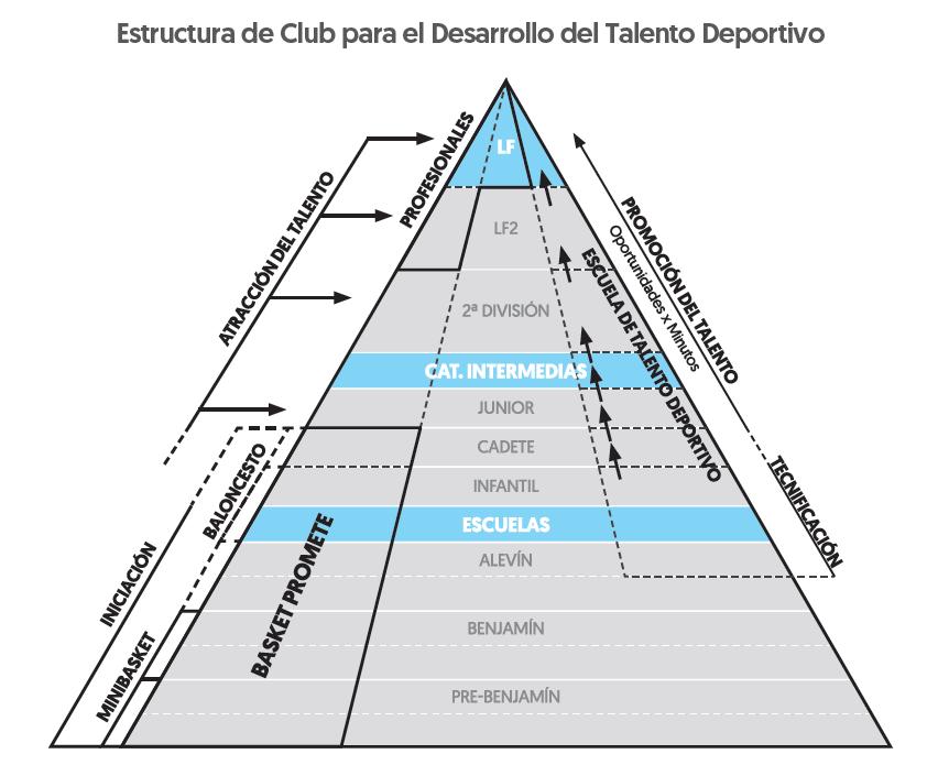 Estructura de club para el desarrollo del talento deportivo